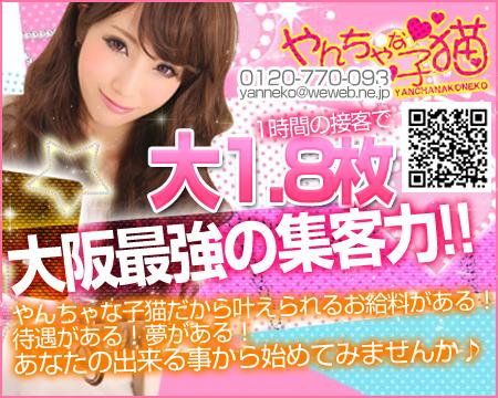 ミナミ(難波/日本橋…)・やんちゃな子猫の稼げる求人