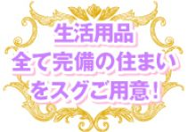愛知その他・ピラミッドの求人用画像_02