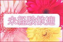 柏市/松戸市・人妻総選挙Mrs48の求人用画像_01