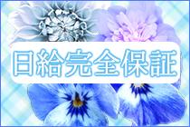 柏市/松戸市・人妻総選挙Mrs48の求人用画像_02