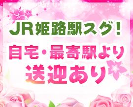 姫路市・ピンクマンゴー姫路店の求人用画像_03