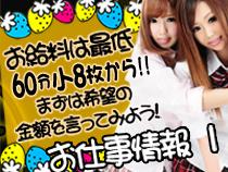 ミナミ(難波/日本橋…)・いたずら子猫ちゃん難波店の求人用画像_01