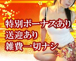 品川/五反田/目黒・かんざしの求人用画像_03