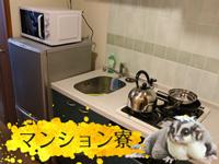 品川/五反田/目黒・アニマルパラダイスの求人用画像_03