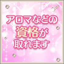 新宿/歌舞伎町・性感回春マッサージ アロマルキア東京の求人用画像_01
