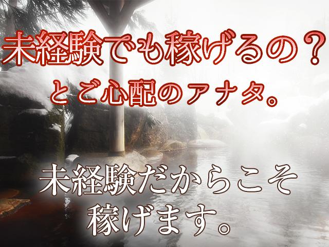柏市/松戸市・松戸人妻花壇の求人用画像_02