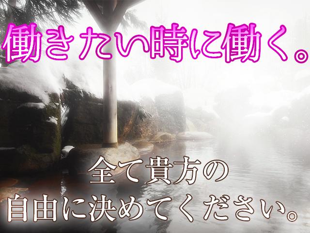 柏市/松戸市・松戸人妻花壇の求人用画像_03