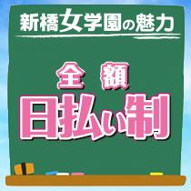 新橋/浜松町/田町…・新橋女学園の求人用画像_03