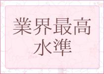 横浜市/関内/曙町・人妻スタイリッシュクラブの求人用画像_01