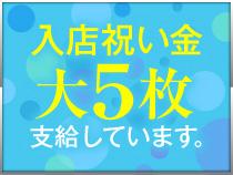 新宿/歌舞伎町・高田馬場Shangri-La(シャングリラ)の求人用画像_01