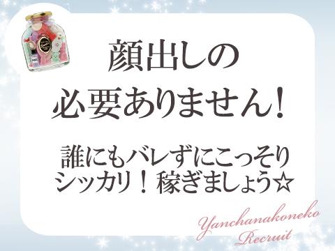 ミナミ(難波/日本橋…)・やんちゃな子猫の求人用画像_01