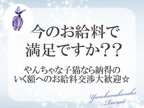 ミナミ(難波/日本橋…)・やんちゃな子猫の求人用画像_03