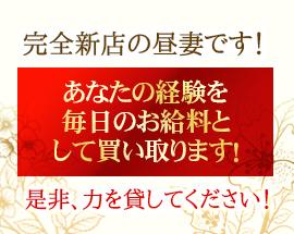 品川/五反田/目黒・昼下がりの人妻たちへの求人用画像_03