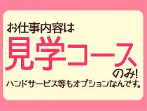 ミナミ(難波/日本橋…)・オーディションの求人用画像_02
