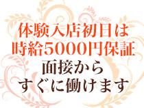 秋葉原/神田/大手町・乳ビーナスの求人用画像_01