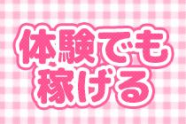 大阪ほか・ピンクの子犬の求人用画像_03