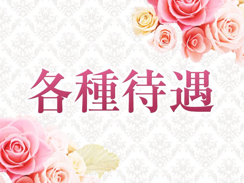静岡市・人妻日記の求人用画像_02