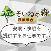 秋葉原/神田/大手町・そいねの森 秋葉原店の求人用画像_01