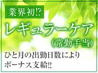 ミナミ(難波/日本橋…)・熟女家PLUS 難波店の求人用画像_03