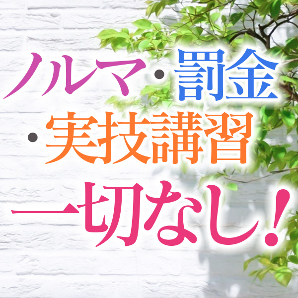横浜市/関内/曙町・横浜熟女MAXの求人用画像_01