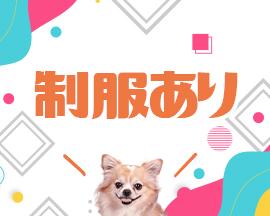 博多・チワワ博多店の求人用画像_03