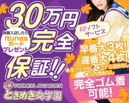 錦糸町/亀戸/小岩・小岩ときめき女学園の稼げる求人