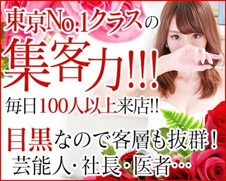 品川/五反田/目黒・アリスマリオン