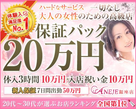 新橋/浜松町/田町…・銀座アネージュの稼げる求人