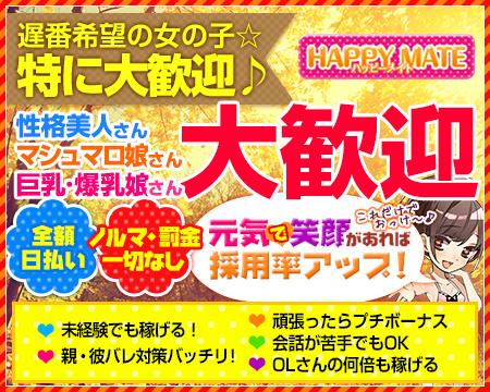 錦糸町/亀戸/小岩・ハッピーメイト