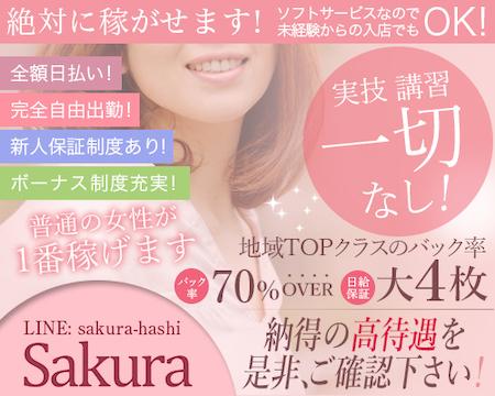 sakura・横浜市/関内/曙町の求人