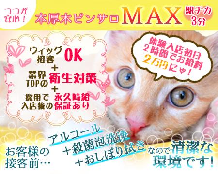厚木市・MAX