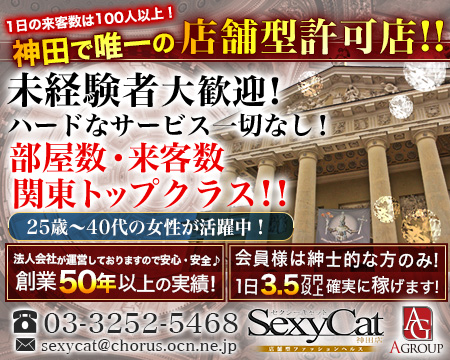 秋葉原/神田/大手町・セクシー・キャット 神田店