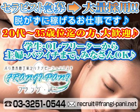 秋葉原/神田/大手町・フランジ・パニ