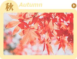 秋-autumn-の高収入バイト