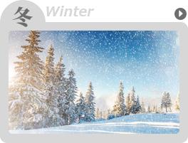 冬-winter-の高収入バイト